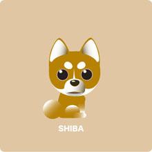 Shiba1